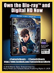 Own the Fantastic Beasts Blu-Ray on 03/28