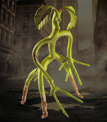 Bendable Bowtruckle™